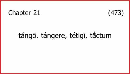 "Front of a vocabulary flashcard with ""chapter 21; tango, tangere, tetigi, tactum"" and the card number, 473."